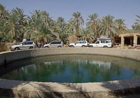 Jeep Safari 10 days